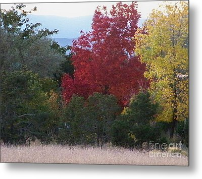 Fall In Santa Fe Metal Print by Brian  Commerford