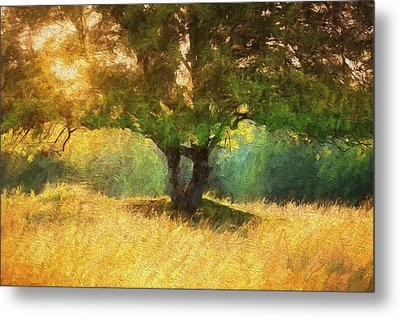 Fall In The Meadow Metal Print