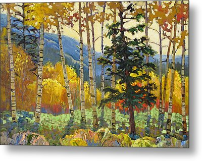 Fall In The San Juans Metal Print by Susan McCullough