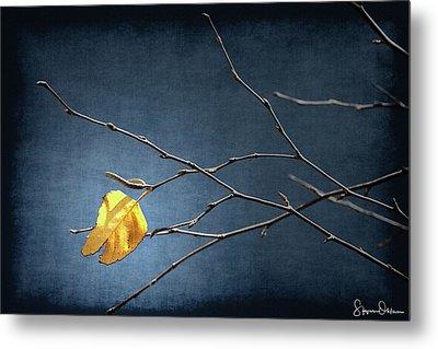 Fall Leaves Study 2 - Last Leaf - Signed Limited Edition Metal Print
