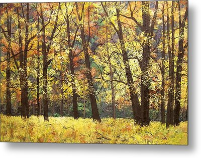 Fall Oaks In El Capitan Meadow Yosemite National Park Metal Print by Connie Tom