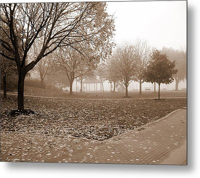 Fall  Metal Print by Paul SANDILANDS