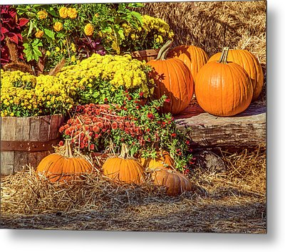 Metal Print featuring the photograph Fall Pumpkins by Carolyn Marshall