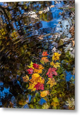 Fall Reflection - Pisgah National Forest Metal Print