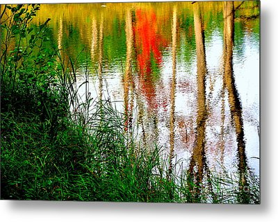 Metal Print featuring the photograph Fall Reflections by Elfriede Fulda