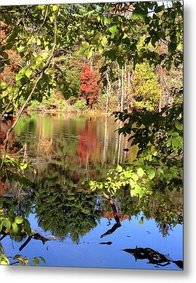 Fall Reflections Metal Print by Nancy Landry
