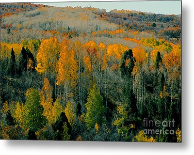Fall Ridge Metal Print by David Lee Thompson