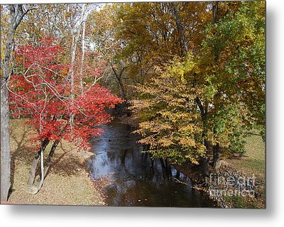Fall Transition Metal Print by Eric Liller