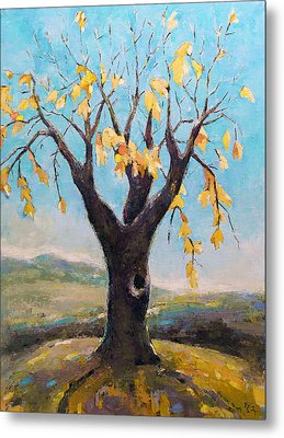 Fall Tree In Virginia Metal Print by Becky Kim