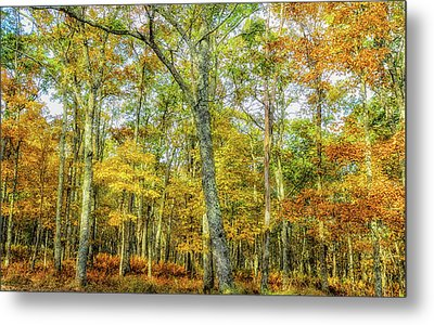 Fall Yellow Metal Print