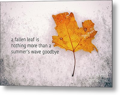 Fallen Leaf On Dirty Ice With Quote Metal Print