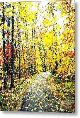 Fallen Leaves Of Autumn Metal Print by Don Phillips