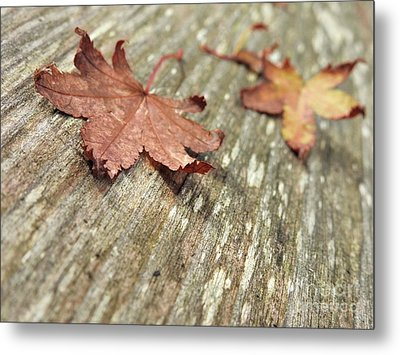 Metal Print featuring the photograph Fallen Leaves by Peggy Hughes