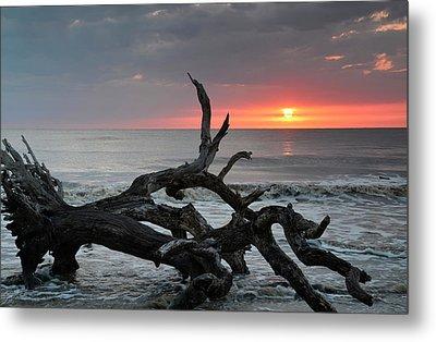 Fallen Tree In Ocean At Sunrise Metal Print by Bruce Gourley