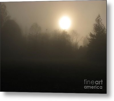 Falling Leaf In Morning Fog Metal Print
