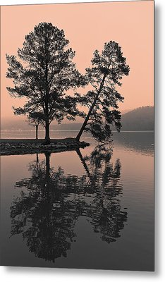 Metal Print featuring the photograph Falling Tree Reflections by Ron Dubin