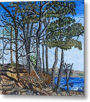 Falls Lake At Blue Jay Point Metal Print by Micah Mullen