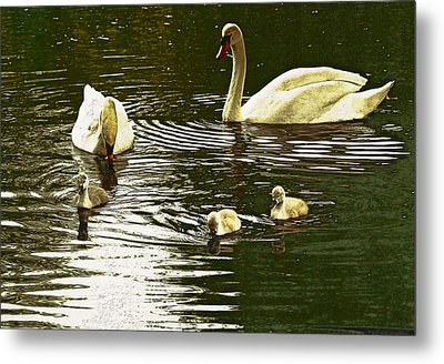 Metal Print featuring the photograph Family Day Out  by Fine Art By Andrew David