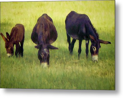 Family Metal Print by Jan Amiss Photography
