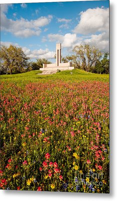 Fannin Monument And Memorial With Wildflowers In Goliad - Coastal Bend South Texas Metal Print