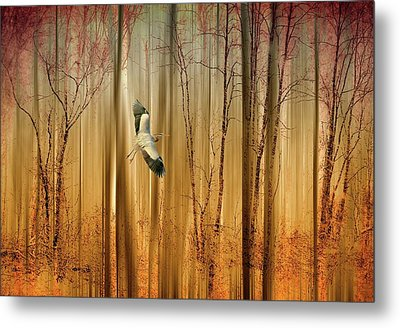 Fantasy Flight Metal Print by Jessica Jenney