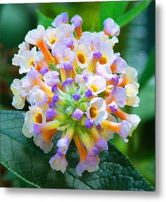 Fantasy Floral Bouquet Metal Print