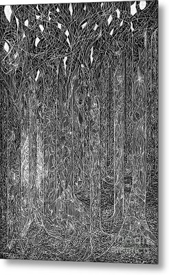Fantasy Forest Metal Print by Charles Cater