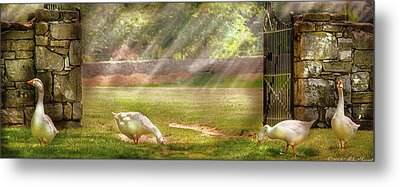 Farm - Geese -  Birds Of A Feather - Panorama Metal Print