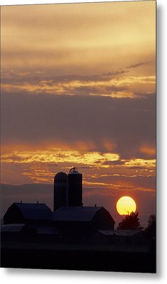 Farm At Sunset Metal Print by Steve Somerville