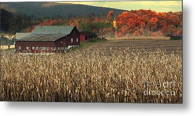 Farm Fall Colors Metal Print by Chuck Kuhn
