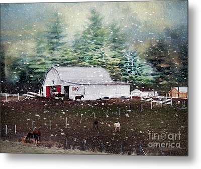 Metal Print featuring the photograph Farm Life by Darren Fisher