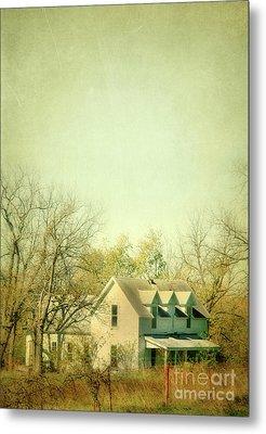 Metal Print featuring the photograph Farmhouse In Arkansas by Jill Battaglia