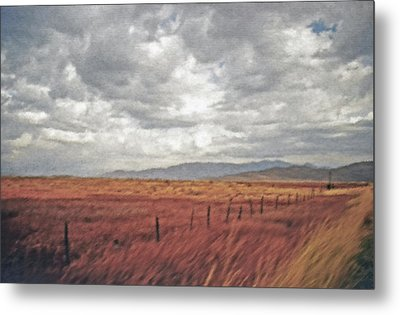 Farmland 2 Metal Print by Steve Ohlsen