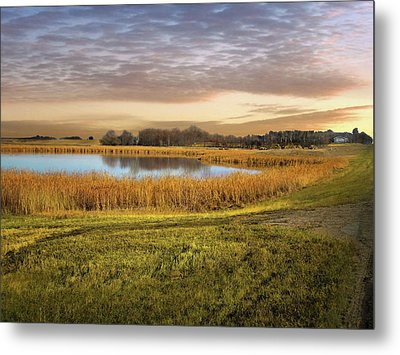 Farmland Pond Metal Print