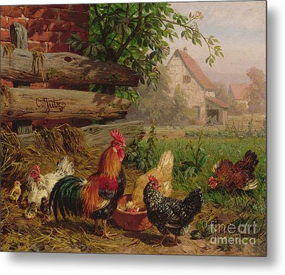 Farmyard Chickens Metal Print