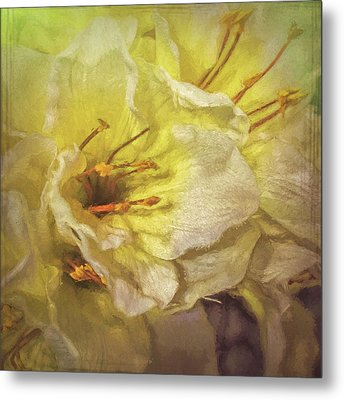 Metal Print featuring the photograph Faux Flowers by Lewis Mann