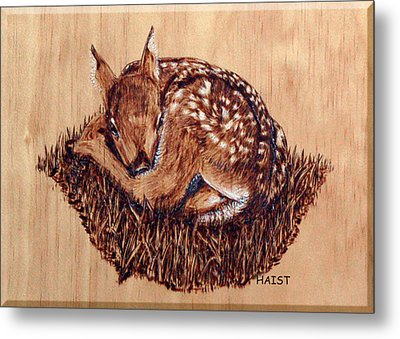 Metal Print featuring the pyrography Fawn by Ron Haist