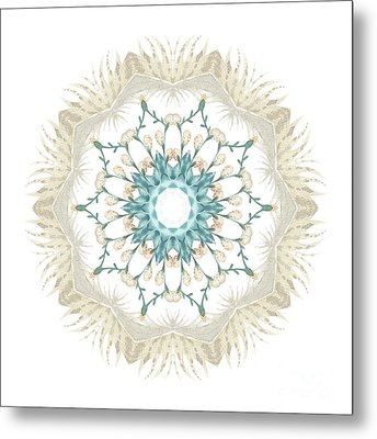 Metal Print featuring the digital art Feathers And Catkins Kaleidoscope Design by Mary Machare