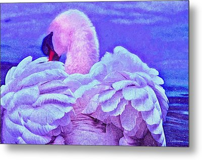 Feathers Of Royalty Metal Print by Dennis Baswell