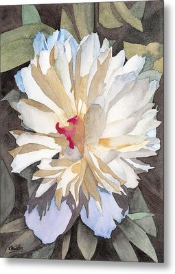 Feathery Flower Metal Print