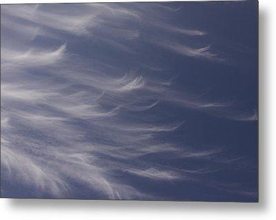 Metal Print featuring the photograph Feathery Sky by Shari Jardina