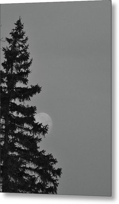 February Morning Moon Metal Print by Maria Suhr