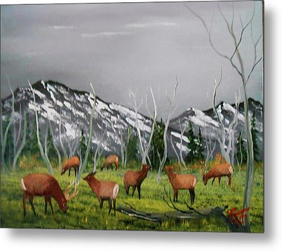 Metal Print featuring the painting Feeding Elk by Al Johannessen