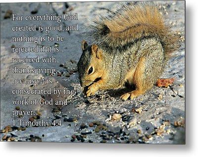 Feeding Squirrel 1timothy 4 V 4 Metal Print by Linda Phelps