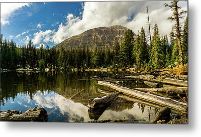 Fehr Lake Metal Print by TL Mair
