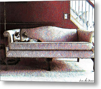 Metal Print featuring the photograph Felines Be Like... by Iowan Stone-Flowers
