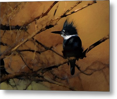 Metal Print featuring the digital art Female Belted Kingfisher 2 by Ernie Echols