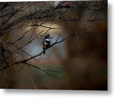 Metal Print featuring the digital art Female Belted Kingfisher 3 by Ernie Echols