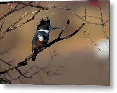 Metal Print featuring the digital art Female Belted Kingfisher by Ernie Echols
