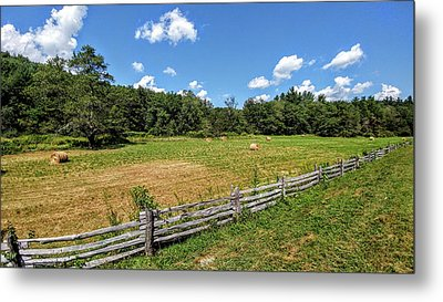 Fence Line Metal Print by Bill Morgenstern